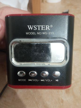 Колонка Wster