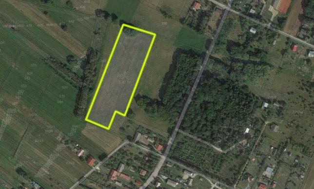 Działka rolno budowlana 1,47 ha Domanice-Kolonia, powiat Siedlecki