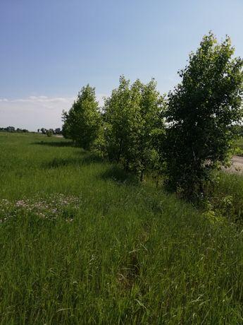 Продам участок земли под застройку 25 соток