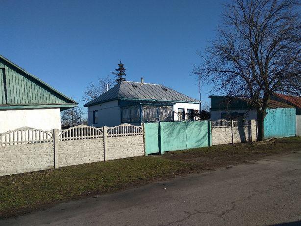 Продам будинок в с.Велика Стариця