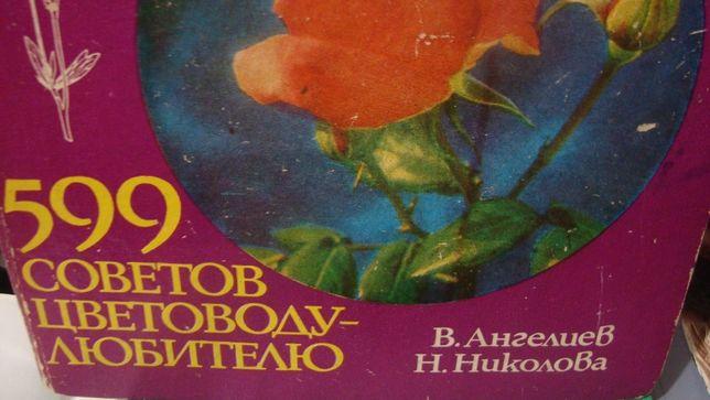 Книга-справочник. Комнатные растения.