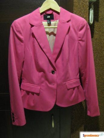 Żakiet różowy z H&M śliczny taliowany tani