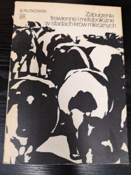Zaburzenia metaboliczne w stadach krów mlecznych