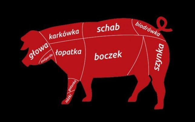 Zdrowe mięso WIEPRZOWINA Półtusze