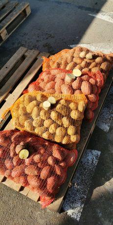 Ziemniaki na zimę - dowóz