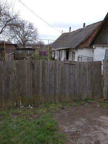 Продам дом с участком 9 сот. Олиевка