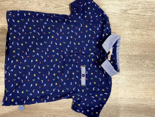 Koszulka polo Coccodrillo rozmiar 80