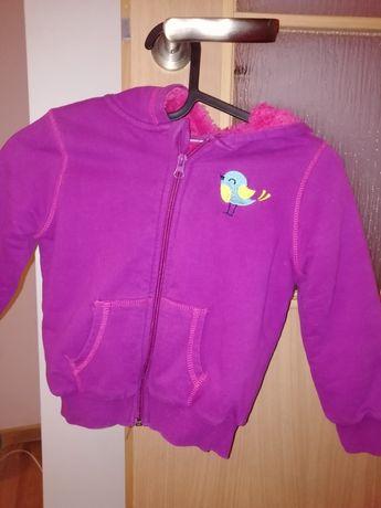 Ocieplana bluza dla dziewczynki Lupilu rozmiar 98 /104