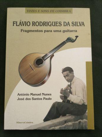 Livro Fragmentos de uma Guitarra Flávio Rodrigues da Silva