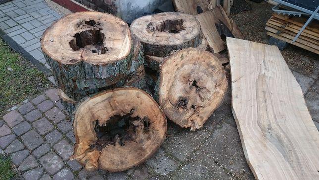 plastry drewna wiąz