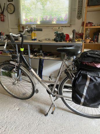 Damka rower miejski