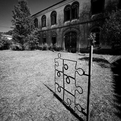 Portão artistica em ferro forjado
