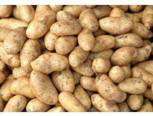 Ziemniaki  z dowozem