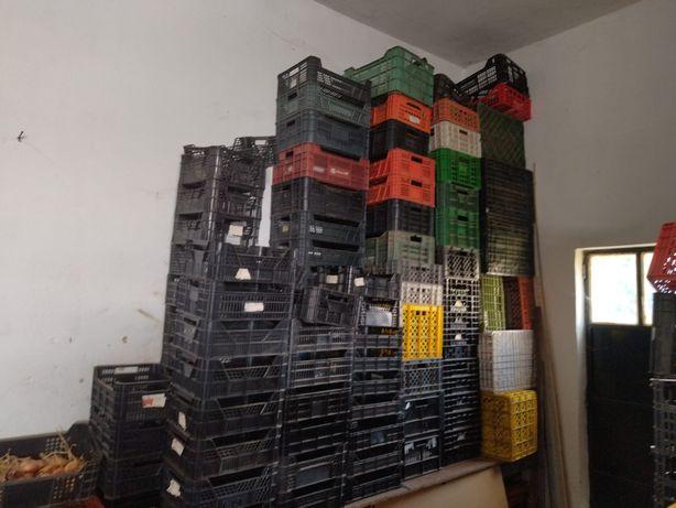 Caixas de fruta em plástico