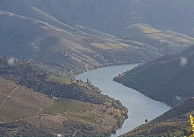 Quinta de vinho do Porto 8ha vista douro