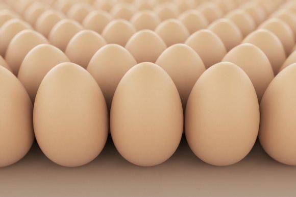 Инкубационные яйца КОББ 500 [Украина]