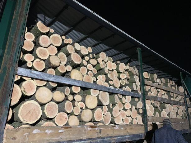 Продам дрова твердых пород оптом и в розницу
