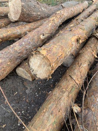 Продам дрова сосна береза