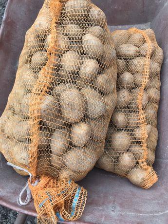 Ziemniaki smaczne