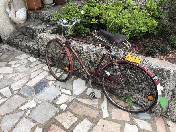 Bicicleta pasteleira champion