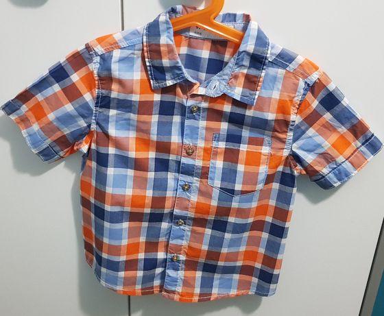 Koszula 5-10-15 rozmiar 110 NOWA