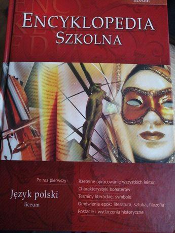 Encyklopedia do języka polskiego - liceum