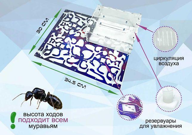 "Муравьиная ферма формикарий Premium ""космос"" для Messor Struktor"