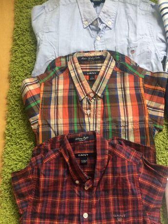 Camisas rapaz