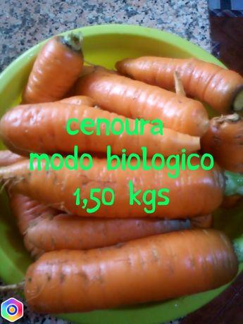 Cenouras biologicas