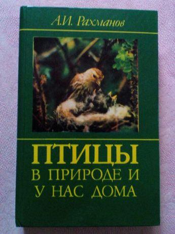 книга Рахманов Птицы в природе и у нас дома