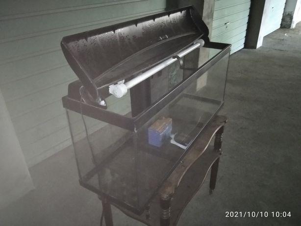 Vendo aquário de 1M x 30 x 40 com fiutro biobox e motor