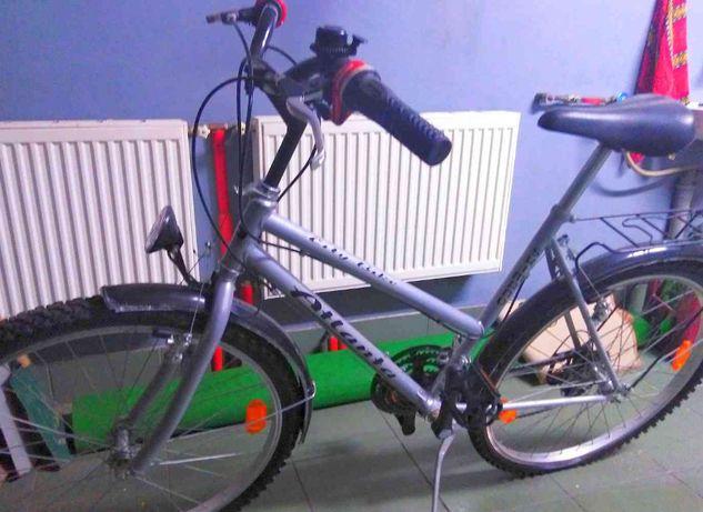 Rower ATLANTA City Bike