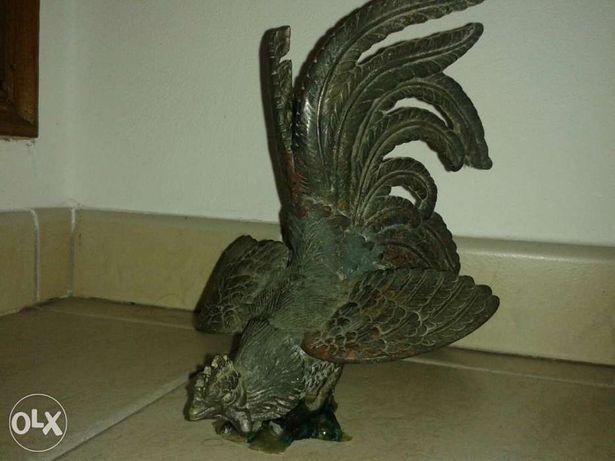 Galo em Bronze com 23 cms