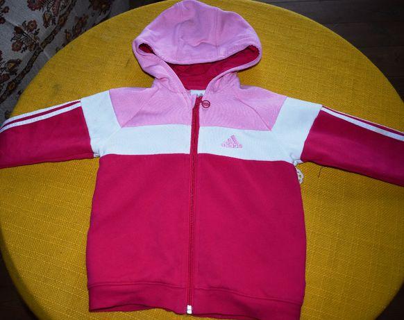 Adidas ,Bluza dla 2 letniej dziewczynki