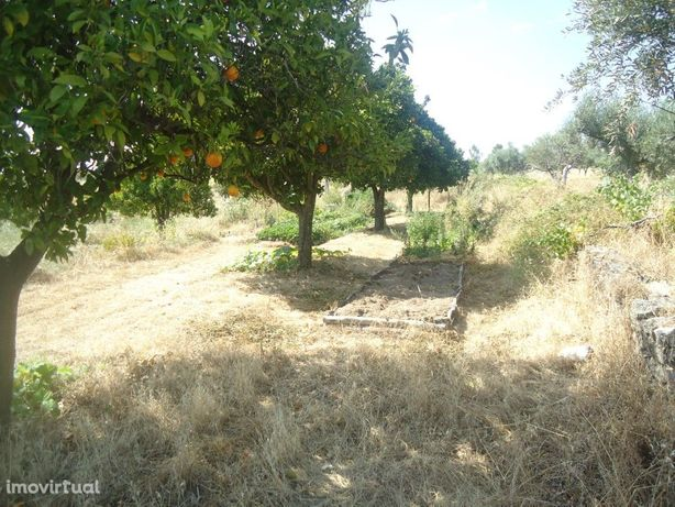 Terreno Vedado em São Miguel de Acha