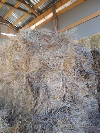 Продам сено в тюках. Разнотравие и люцерна. 40-50 грн. Тюк