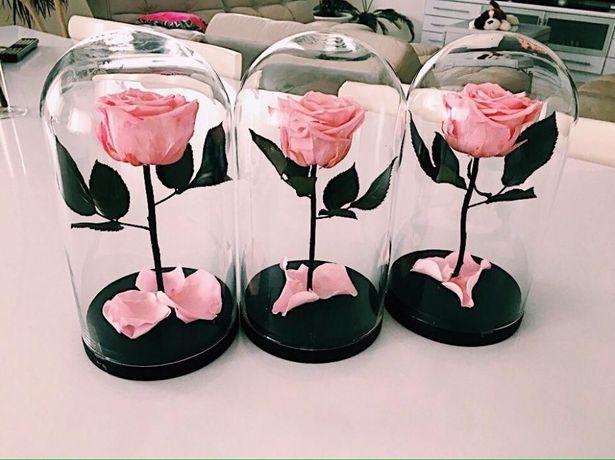 Роза под куполом /32x22 см Rose/Роза в колбе/Відправляємо по Україні