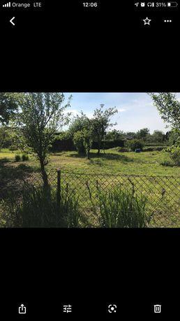 Ogródek działkowy ROD FAT Drzewka, z dala od ulicy, cisza Wrocław