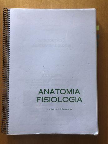 Resumos Anatomia e Fisiologia