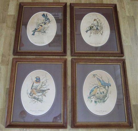 Conjunto de 4 quadros antigos