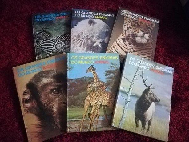 Os grandes enigmas do mundo animal