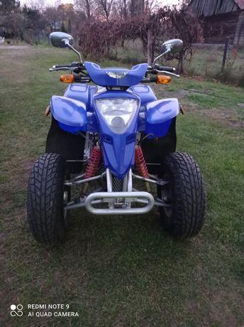 Quad Suzuki extreme 300