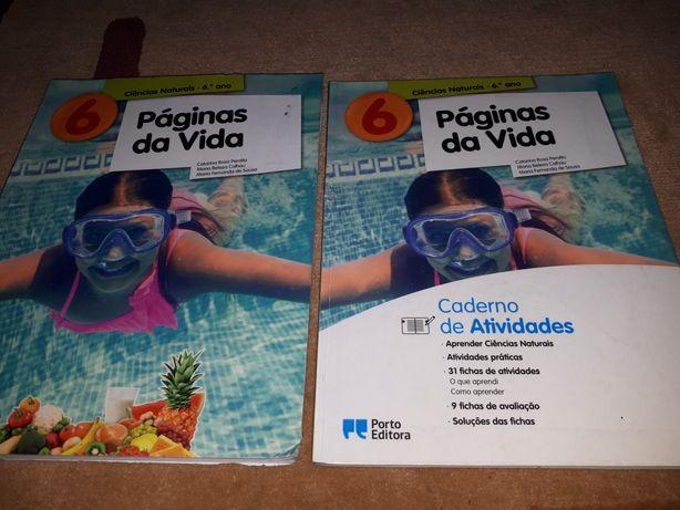 Livros ciências 6 ano