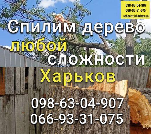 Спил аварийных деревьев, обрезка, кронирование, Харьков - нал/безнал