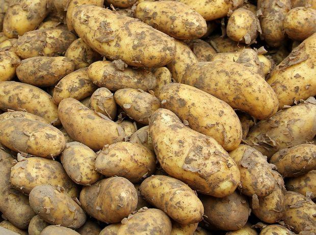 Ziemniaki bryza bardzo smaczne