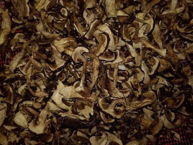 Grzyby suszone podgrzybek brunatny cena za 100 gram