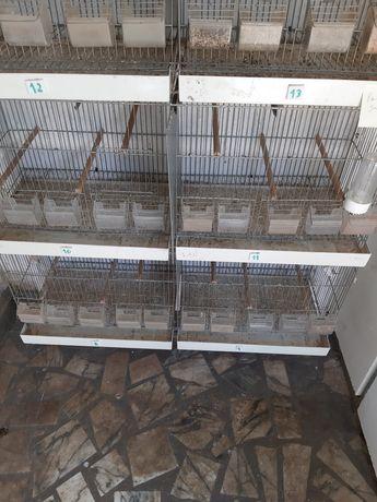 viveiros aves, viveiros  usados  em bom estado 5 módulos