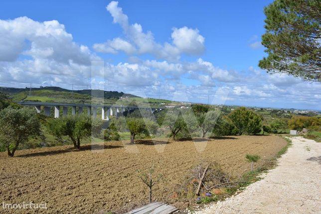 Terreno Agrícola em Bragadas, a 30 minutos de Lisboa - Calhandriz -  V