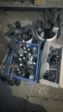 Stare butelki piwne