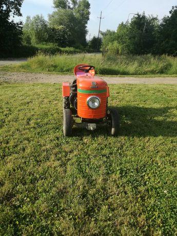 Dzik,sam,traktorek